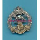ROYAL HAMPSHIRE QUEENS CROWN. ARMY CAP BADGE