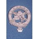 Metal Scotland Cap Badge In Brass
