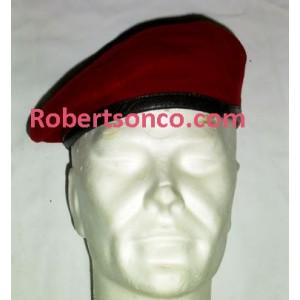 http://www.robertsonco.com/img/p/1450-1561-thickbox.jpg