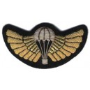 Wings Custom Embroidery Badge